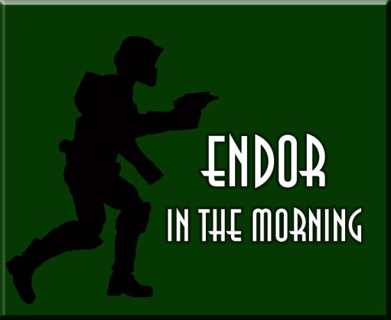 ENDOR IN THE MORNING copy
